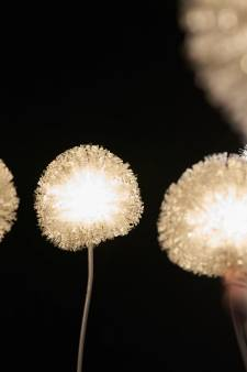 Internationaal lichtfestival doet Slot Zeist aan