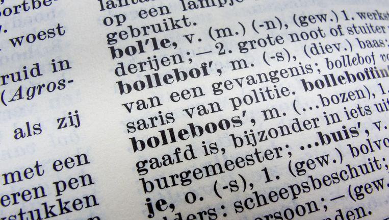 In de volgende papieren editie van de Dikke Van Dale, die later dit jaar uitkomt, verdwijnt bij veel Belgisch-Nederlandse woorden het lemma 'niet algemeen'. Beeld anp