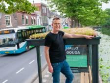 D66 Waddinxveen wil ook 'groene' bushokjes, net zoals in Gouda