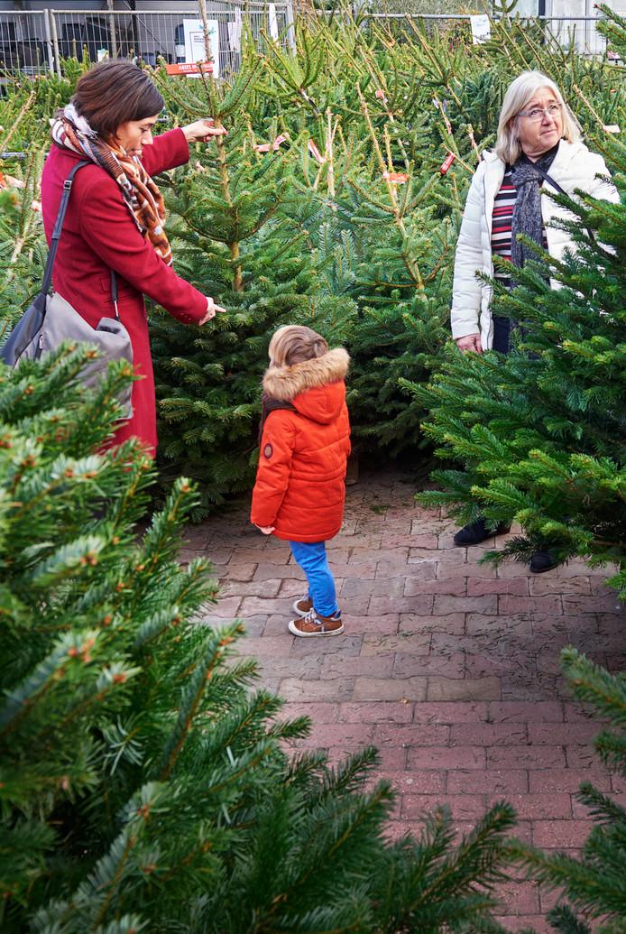 Kerstbomen Van Kleine Verkopers Zijn Niet Groen Maar Zwart Oss