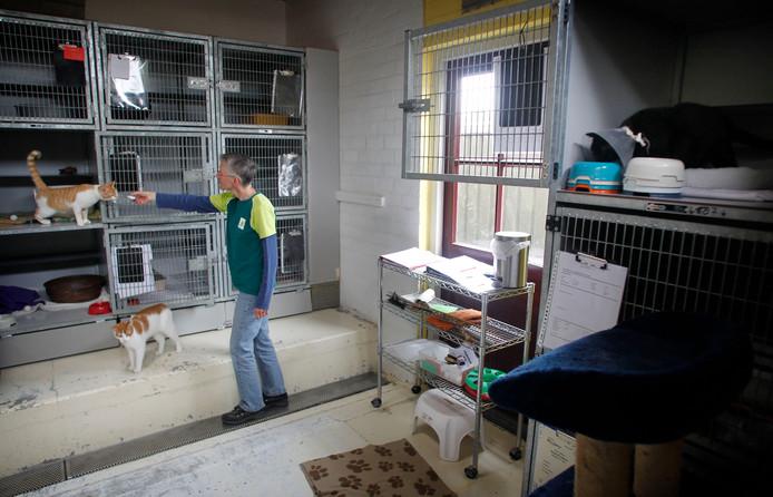 Archieffoto - Dierenopvangcentrum De Doornakker snakt al jaren naar een nieuwe stek.