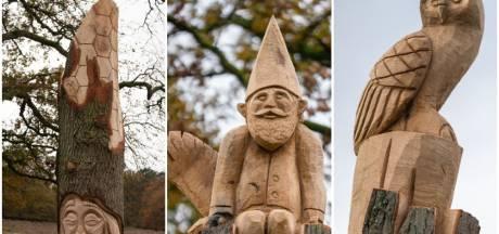 Bomen bij De Carolinahoeve getransformeerd tot kunstwerken