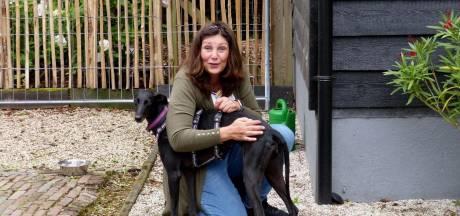 Poortugaalse Cathalina haalt mishandelde, Spaanse honden naar Nederland: 'Je kunt hun ribben tellen'
