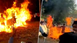 Koeien worden gedwongen door vuurzee te lopen