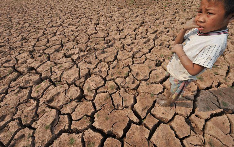 Uitgedroogde rijstvelden bij de Mekongrivier in Laos Beeld afp