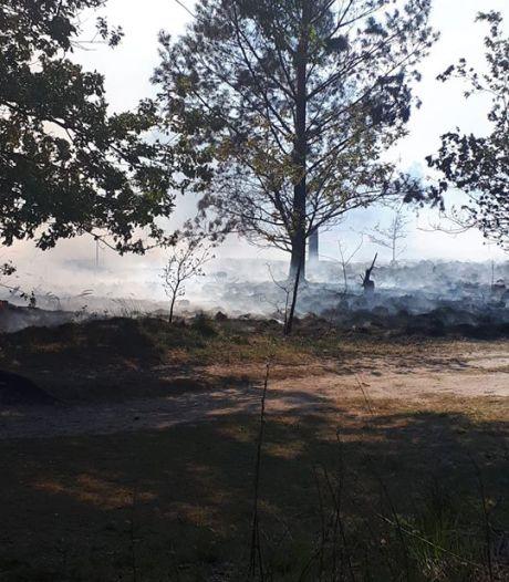 Opnieuw brand op Cartierheide bij Hapert, politie vermoedt brandstichting