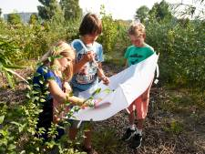 Kampen kan 'tiny forests' aanleggen