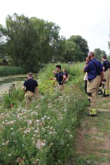 Duikers op zoek naar man in water aan Brabantweg in Arnhem