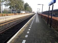 Vechtpartij in trein Elst-Zetten over zitplek: 120 uur werkstraf