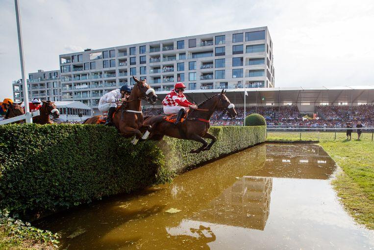 De traditionele sprong over de Gaverbeek. Geen probleem voor de paarden. Er waren deze editie amper blessures.