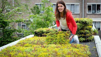 Ecohuis houdt infosessie over afvalwater