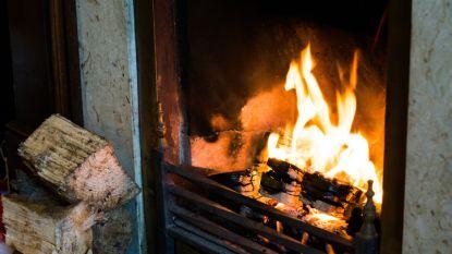 Vervuilende houtkachels zijn grootste bron van hernieuwbare energie in Vlaanderen