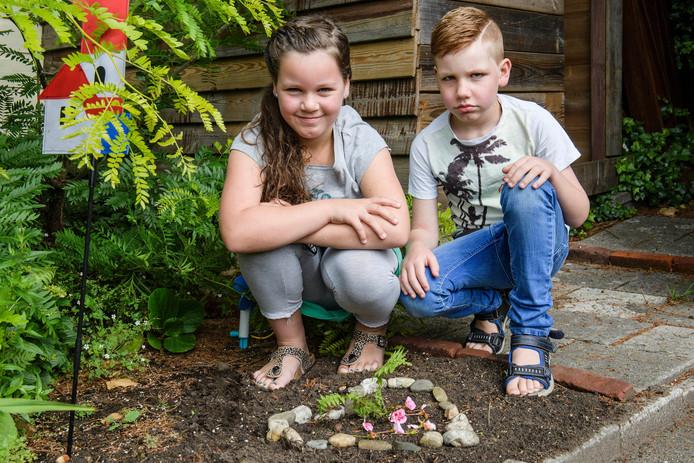 Naar aanleiding van het overlijden van buurtkat Guus wil Valerie Waanders borden gaan plaatsen in de wijk