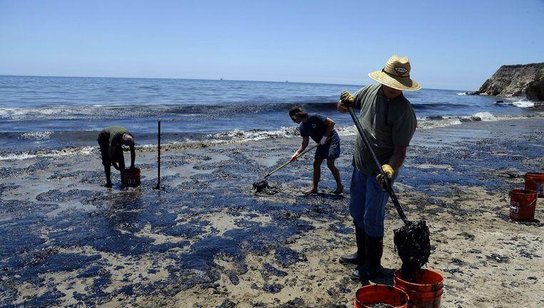 Vrijwilligers helpen bij het opruimen van de gelekte olie aan de kust van Californië. Beeld epa