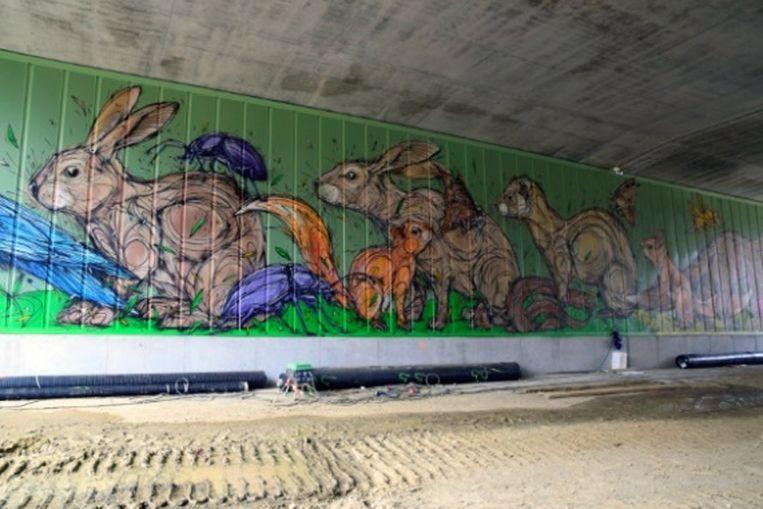 Kunst aan de binnenwanden van ecoduct Konijnenpijp