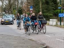 Hoe gaat De Bilt de Jan Steenlaan in Bilthoven veiliger maken?