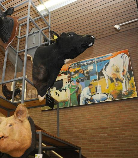 Nationaal Veeteeltmuseum is weer dakloos na afgeketste fusie