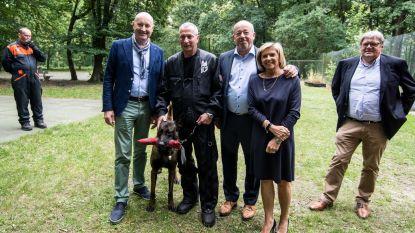 'Reddingscentrum Vicky & Alexis' wordt opleidingscentrum voor reddingshonden in Limburg