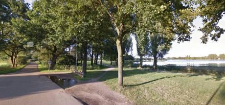 Bestuurder van auto die hond doodreed in Zwolle nog niet gevonden