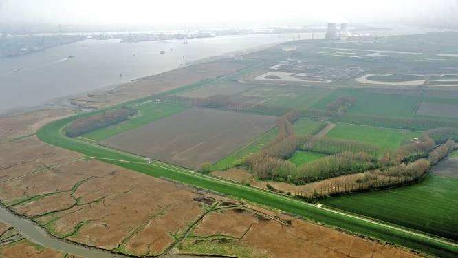 Nederlandse politicus stookt strijd om Westerschelde weer op