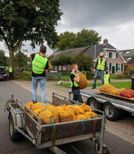 Kinderen uit Staphorst rapen voor tienduizend euro eikels in herfstvakantie: 'Ik denk dat de speelgoedwinkel het druk heeft'