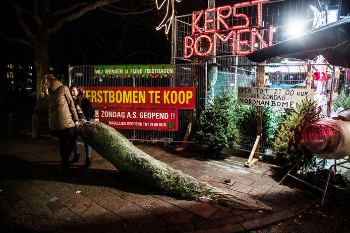 Slepen met een kerstboom in Nijmegen.