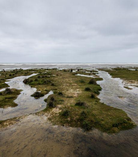 Grote zorgen over nieuwe zoutwinning in Waddenzee