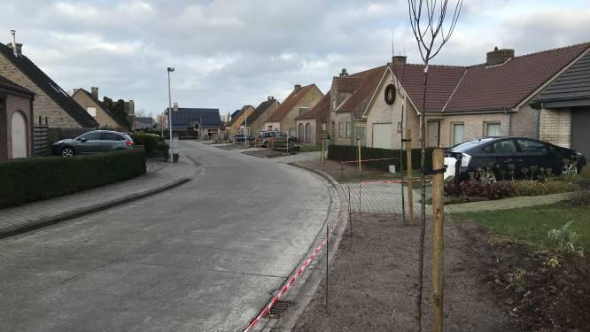 """Oude bomen in wijk Klokkeput gerooid en vervangen: """"Wortels brachten schade toe aan openbaar domein en privé-eigendommen"""""""