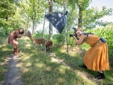 Op de foto of yoga met een alpaca: sta jij ook in de rij?
