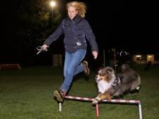Hondenvrienden combineren pret met sport en spel