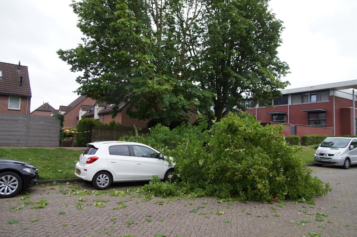 Door de harde wind waaide een flinke tak op een auto in Waalwijk.
