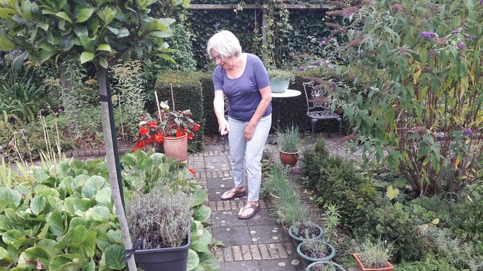 """,,Daar liepen de ratten"""", wijst Marie-Jeanne Maas-Prick uit Roosendaal."""