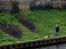 Straatbeeld: Nieuwe bankjes en meer groen maakt Zuid-Willemsvaart iets meer park