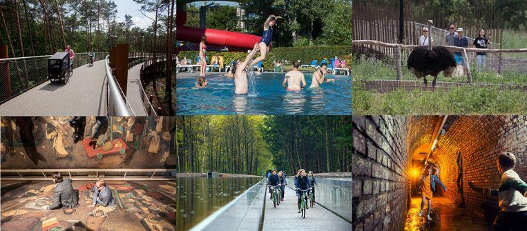 Zes Limburgse troeven: Fietsen door de Bomen - Lago Pelt Dommelslag - La Biomista - Bokrijk met de Bruegelexpo - Fietsen door het Water - C-Mine