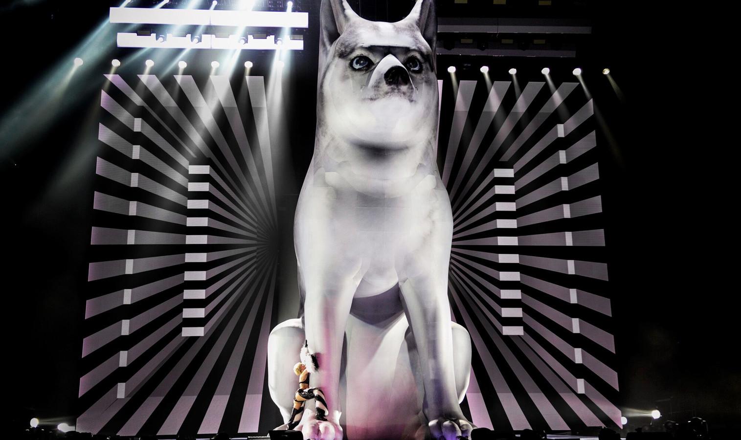 """Matthew Whitehead: ,,Miley Cyrus gaf ons foto's van haar hond, want ze wilde haar eigen hond groot op het podium"""""""