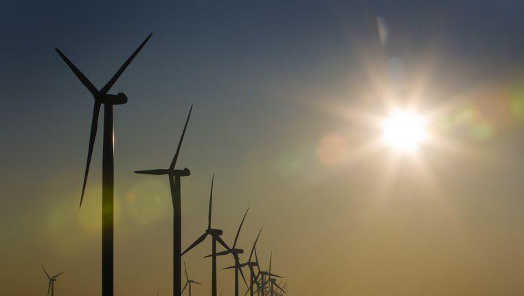 Windmolens op de Maasvlakte. Beeld ANP
