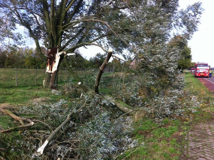 Bij Maren-Kessel waaide een tak van een boom door de hevige wind.