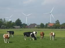Tegenstanders willen plannen smoren: 'Uitzicht bij Vlist niet ontsieren door windturbines'