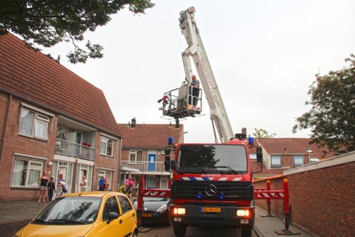 Een hoogwerker van de brandweer werd ingezet om de papegaai te vangen.