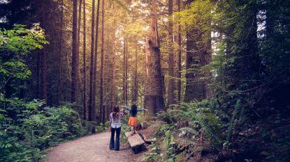Lenteweer dit weekend: de leukste picknickplekken en wandelrouters per provincie