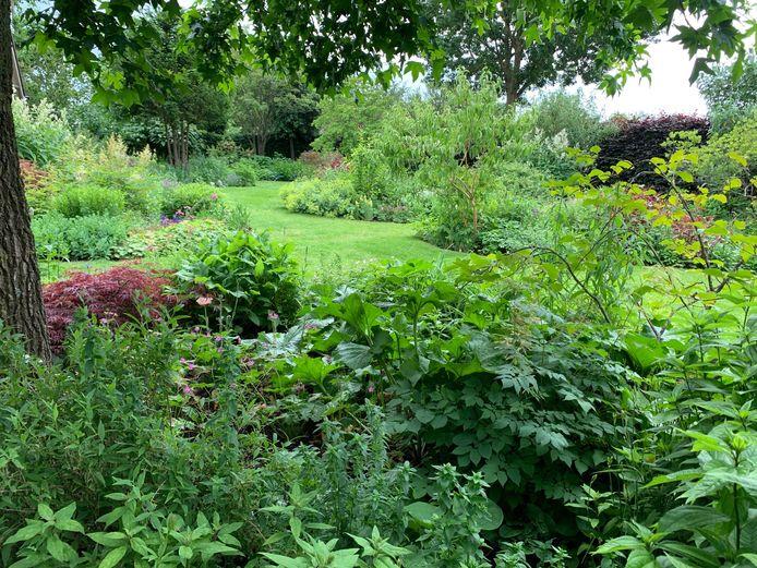 Blik op de tuin van Nico Wissing uit Megchelen.