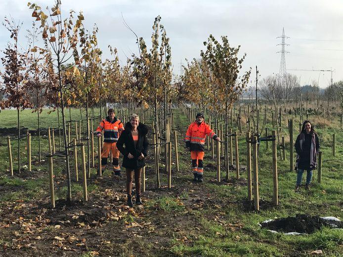 Dit jaar werden 190 bomen geplant in het geboortebos