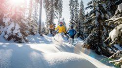 Wel sneeuw, niet ver: op deze bestemmingen geniet je van winterpret dichtbij huis