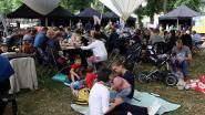 Inwoners genieten van picknick op het dorpsplein