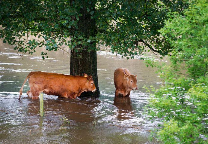 Wateroverlast na een hoosbui.
