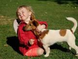 Hondje liet verdwaalde Matilda (3) geen seconde alleen bij superstorm: 'Ze houden van elkaar'