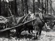 'Wamberg-boer' Hans Loeffen overleden