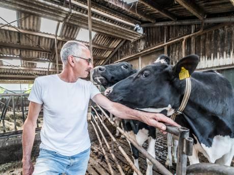 Na 50 jaar vindt boer Piet het welletjes