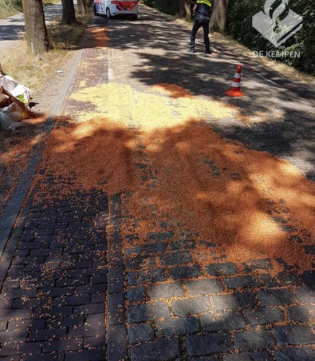 Zakken vol met zaadjes op weg in Casteren: auto flink beschadigd, boer rijdt door