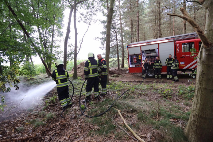 Brandweer blust vuur in de bossen bij Netersel.